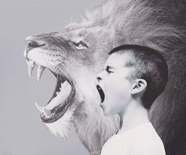 agresja niegrzeczne dziecko zlość