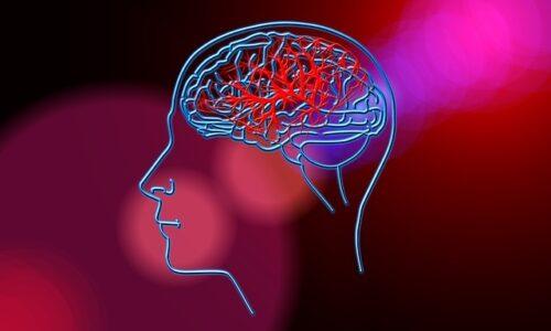 Udar mózgu – i co dalej?