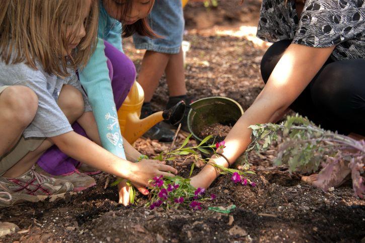 dzieci wspólna zabawa w grupie