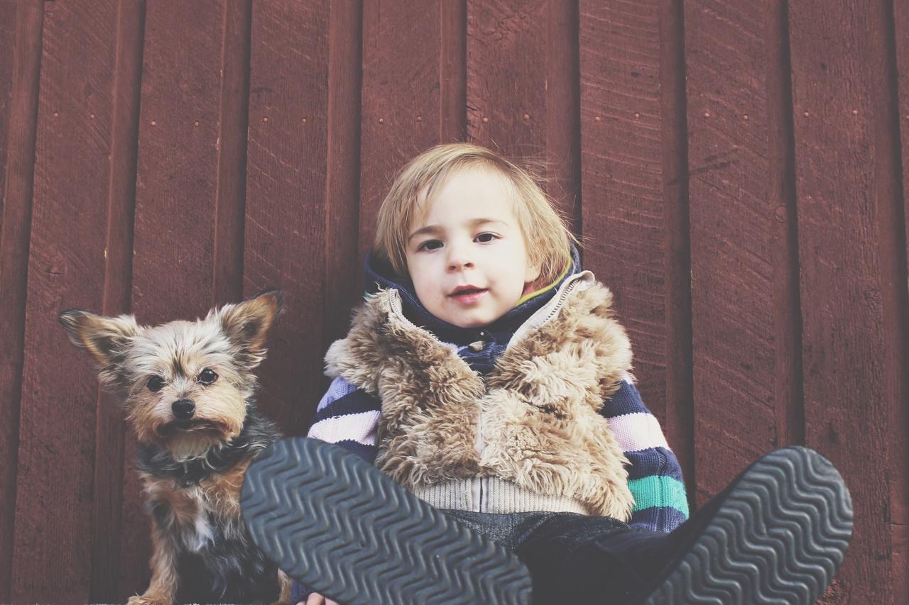 Dziecko a zwierzęta domowe