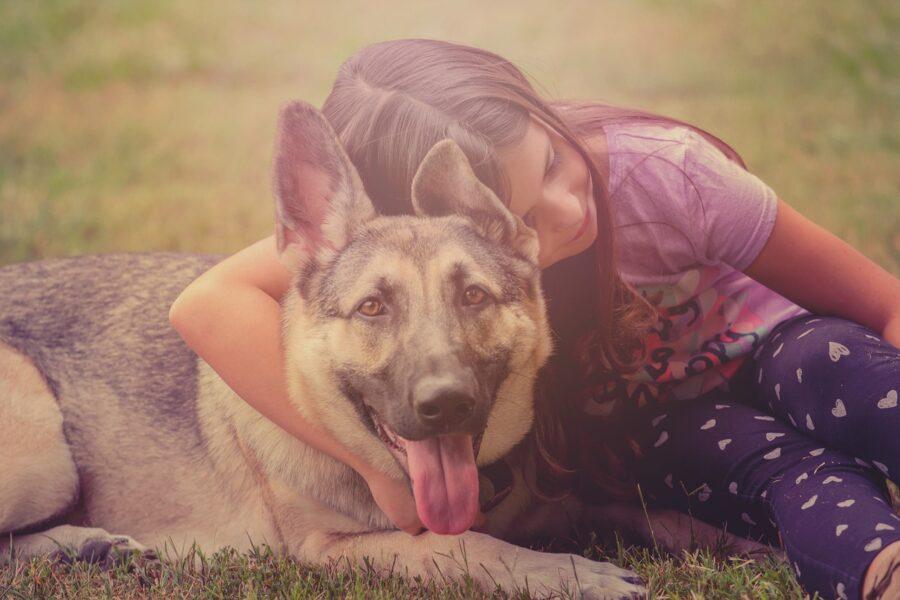 dziecko i pies zwierzę przyjaciele